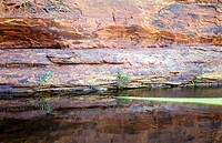 Water place at Kings Canyon