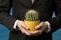 Midsection of businessman holding cactus in a pot