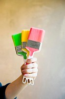 Hand holding colourful paint brushes