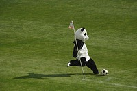 Panda Playing Football (thumbnail)