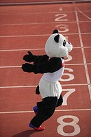 Panda Crosing the Finish Line