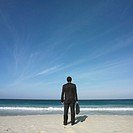 Rear view of Hispanic businessman on beach
