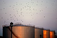 Oil storage tanks in Wandsworth, London