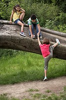 Three friends 7_9 climbing on fallen tree
