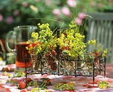 Summery table with fresh strawberries and lady´s mantle