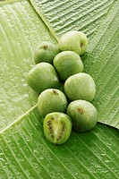 Baby kiwi fruits on banana leaves