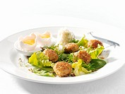 Pike dumplings on salad leaves with grated horseradish Not available for cookbooks in SE