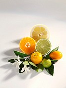 Citrus fruit with leaves and blossom