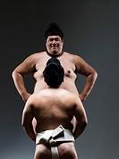 Sumo Wrestler Size Contrast