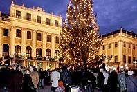 Europe, AUSTRIA, Vienna, schonbrunn christmas market, europe austria vienna,