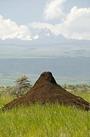 Termite mound, Mt  Kanya in background