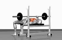 Bench press Part 2 of 2 (thumbnail)