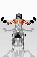 Dumbbell incline fly exercises Part 2 of 2