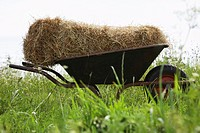 Hay bale on wheelbarrow in field (thumbnail)