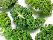 Curly Kale Leaves