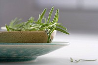 Rosemary on a dish
