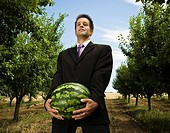 Man carrying melon in orchard low view