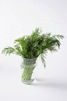 Dill in a glass