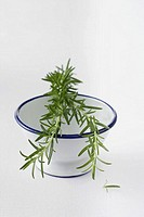 Rosemary on top of a bowl