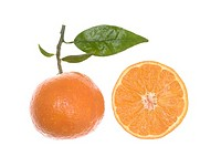Oranges, fruit and slice