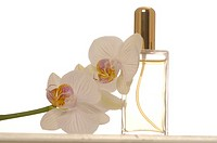 Small perfume bottle and orchid blossoms