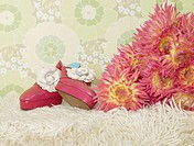 Bouquet of chrysanthemum and a pair of lady`s shoes