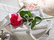 Place setting decorated with a red rose
