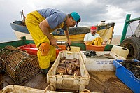 Fishing Boat crabs at Weybourne Norfolk