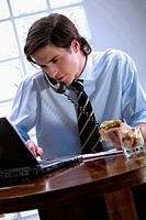 Businessman talking on the telephone while using a laptop
