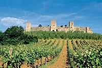 Italy - Tuscany Region - Monteriggioni - Walls