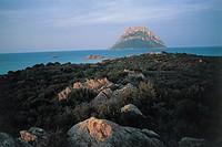 Italy - Sardinia Region - Isle of Tavolara