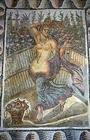 Carthage, roman mosaic in the musuem