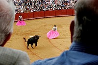 Bullfighting at the Maestranza bullring, Seville, Spain
