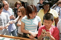 Michigan, Ann Arbor, Main Street, Art Fairs, puzzles, Asian boy, mother,