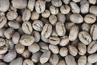 Coffee, beans, India, Pearl, Mountain, raw, Coffea, arabica,