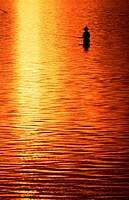 Angler, at, sunrise, Sanur-Bay, Bali, Indonesia
