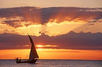 Silhouette of a Dhow Sailing at Sunset  Zanzibar Island, Tanzania