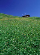 Log Cabin On Top Of Penken Mountain - Low Angle View  Mayrhofen, Tyrol, Austria
