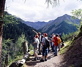 Swiss, national park, Val Trupchun, Guided tour, Hiking, Group, Hikers, Trail, Landscape, Coniferous forest, sports, V