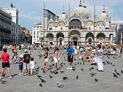 Tourism  Rock pigeons Columba livia being fed by tourists in Piazza San Marco St  Mark´s Square, Venice, Italy  St Mark´s Basilica is in the backgroun...