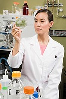 Asian female scientist examining petri dish