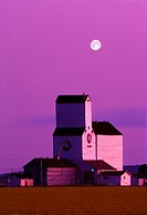 Agriculture - Grain elevator at dusk with a full moon above and canola field in the foreground / Manitoba, Canada