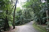 Nova Petropolis park, Rio Grande do Sul, Brazil