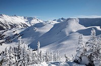 Whistler Mountain, Whistler, British Columbia, Canada