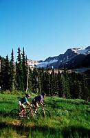young couple ride on bikes down meadow, Whistler, British Columbia, Canada