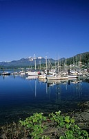 Government docks in Queen Charlotte City, Queen Charlotte Islands, British Columbia, Canada