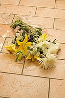 Broken Vase of Flowers on a Floor