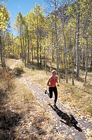Woman Jogging Through Aspen Grove