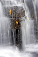 Martins Falls, near Rockway, Ontario