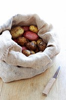 Selection of potatoes in sack on kitchen table with knife